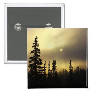 USA, Colorado, San Isabel National Forest. 15 Cm Square Badge