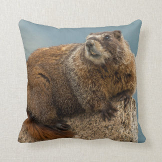 USA, Colorado, San Juan Mountains 2 Cushion