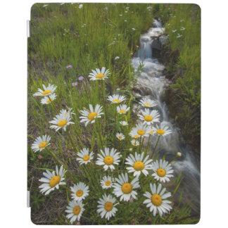 USA, Colorado, San Juan Mountains. Daisies iPad Cover