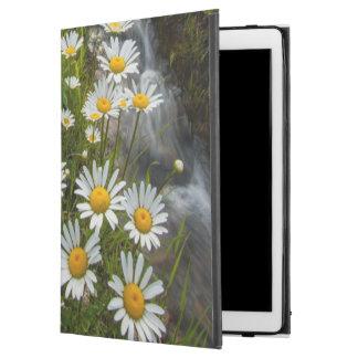 """USA, Colorado, San Juan Mountains. Daisies iPad Pro 12.9"""" Case"""