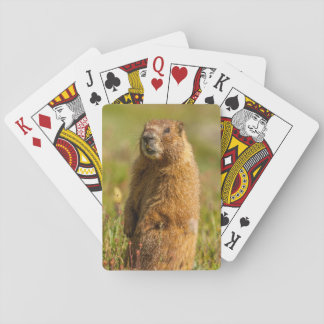 USA, Colorado, San Juan Mountains Playing Cards