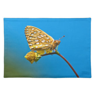 USA, Colorado. Skipper butterfly on flower stem Placemat