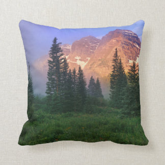 USA, Colorado, Snowmass Wilderness Cushion