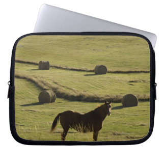 USA, Colorado, Steamboat Springs, hay rolls and Laptop Sleeve