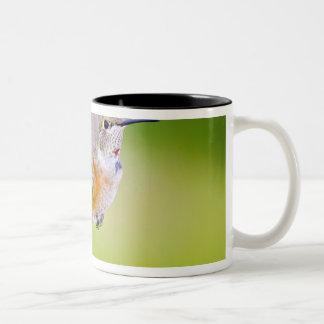 USA, Colorado, Summit County, Heeney. Front Two-Tone Coffee Mug