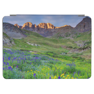USA, Colorado. Sunrise On Wildflowers iPad Air Cover
