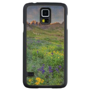 USA, Colorado. Sunrise On Wildflowers Maple Galaxy S5 Slim Case