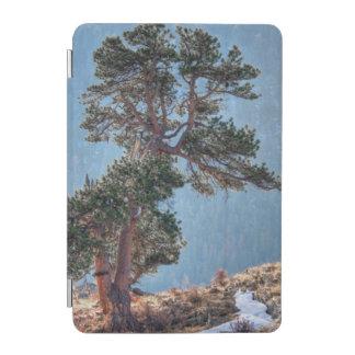 USA, Colorado, Tree In Estes Park iPad Mini Cover