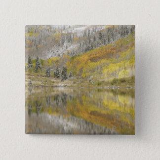 USA, Colorado, White River National Forest, 2 15 Cm Square Badge