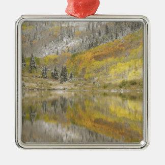 USA, Colorado, White River National Forest, 2 Christmas Ornament