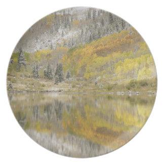 USA, Colorado, White River National Forest, 2 Plate