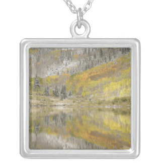 USA, Colorado, White River National Forest, 2 Silver Plated Necklace