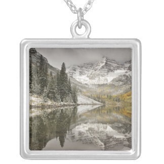USA, Colorado, White River National Forest, Silver Plated Necklace