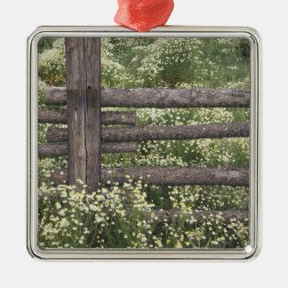 USA, Colorado, Wild Chamomile around log fence Christmas Ornament