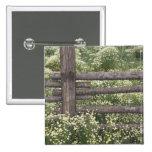 USA, Colorado, Wild Chamomile around log fence Pin
