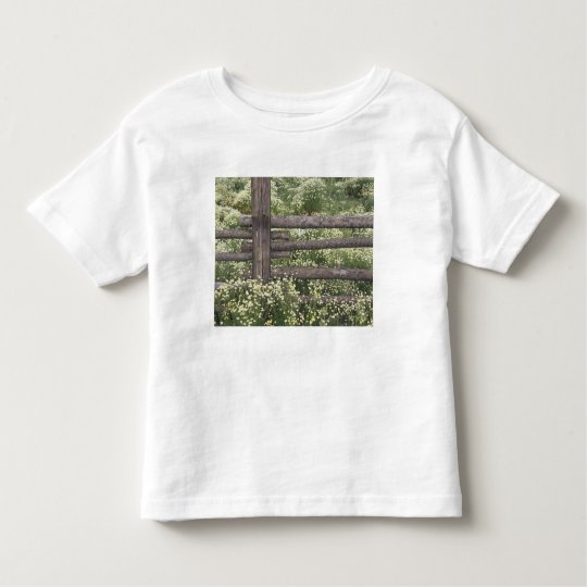 USA, Colorado, Wild Chamomile around log fence Toddler T-Shirt