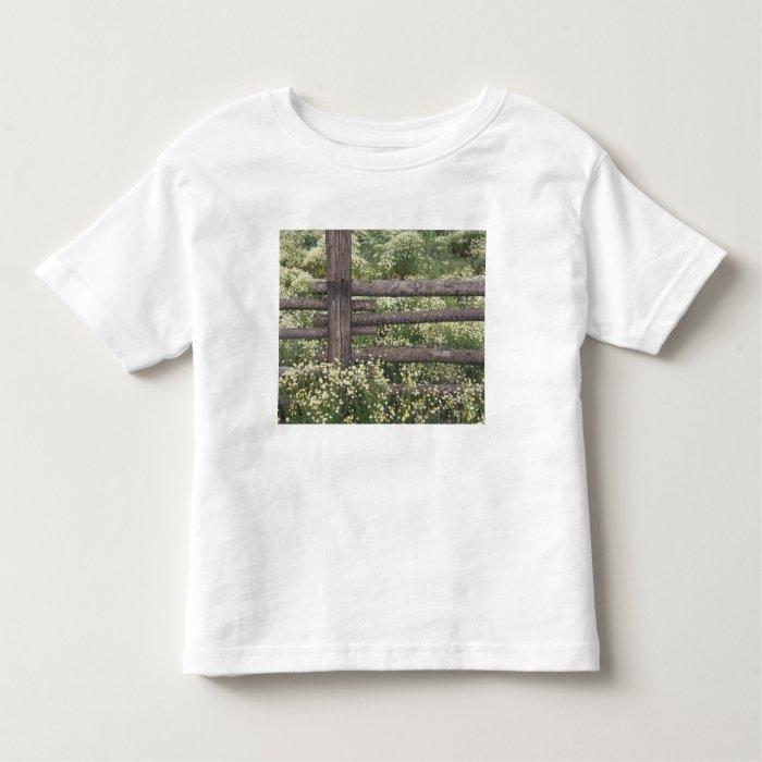 USA, Colorado, Wild Chamomile around log fence Toddler T-Shirt