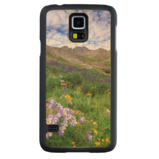 USA, Colorado. Wildflowers In American Basin Carved Maple Galaxy S5 Case