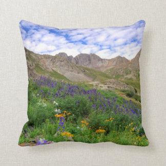 USA, Colorado. Wildflowers In American Basin Cushion