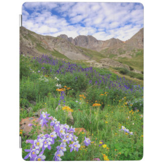 USA, Colorado. Wildflowers In American Basin iPad Cover