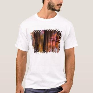 USA, DC, Washington, Washington National T-Shirt