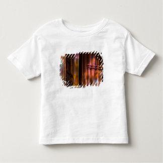 USA, DC, Washington, Washington National Toddler T-Shirt