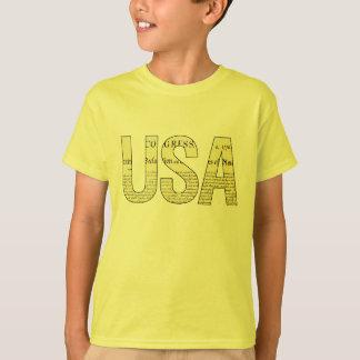 USA Declaration of Independence t-shirt