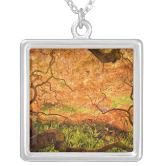 USA, Delaware, Wilmington. Japanese maple Silver Plated Necklace