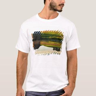 USA, Delaware, Wilmington. Stone barn on edge T-Shirt