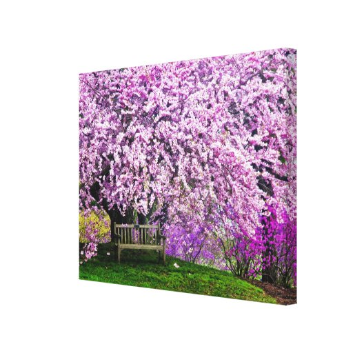USA, Delaware, Wilmington. Wooden bench under Stretched Canvas Print