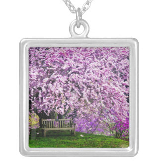 USA, Delaware, Wilmington. Wooden bench under Silver Plated Necklace