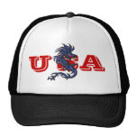 USA Dragon hat