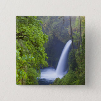 USA, Eagle Creek, Columbia Gorge, Oregon. 15 Cm Square Badge