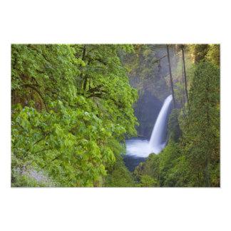 USA, Eagle Creek, Columbia Gorge, Oregon. 2 Photo Print