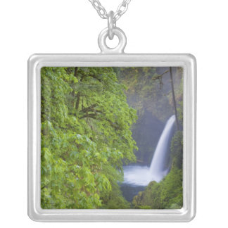 USA, Eagle Creek, Columbia Gorge, Oregon. 2 Silver Plated Necklace