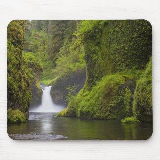 USA, Eagle Creek, Columbia Gorge, Oregon. 3 Mouse Mat