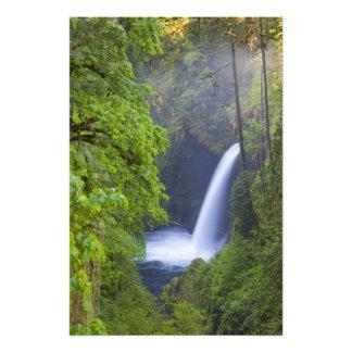 USA, Eagle Creek, Columbia Gorge, Oregon. Photo Print