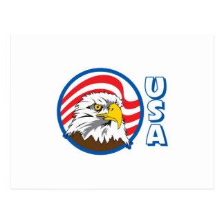 USA EAGLE FLAG POSTCARD