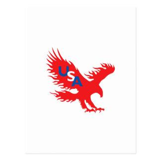 USA EAGLE POST CARD