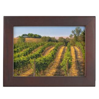 USA, Eastern Washington, Walla Walla Vineyards Keepsake Box