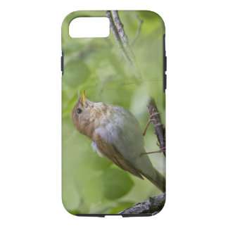 USA, Ellensburg, Washington. Male Veery singing iPhone 8/7 Case