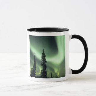USA, Fairbanks area, Central Alaska, Aurora 2 Mug
