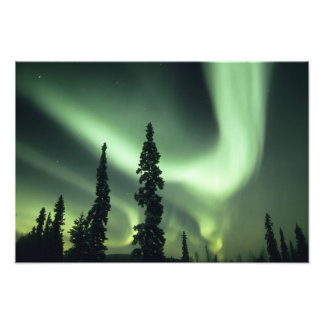 USA, Fairbanks area, Central Alaska, Aurora 2 Photo Print