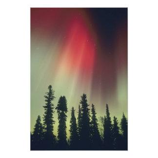 USA, Fairbanks area, Central Alaska, Aurora Photo Print