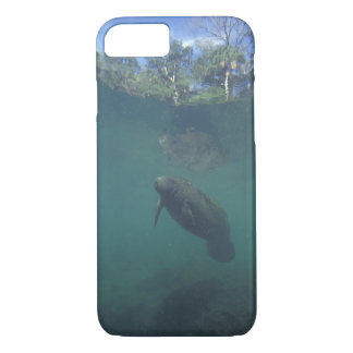 USA, FL, Manatee iPhone 8/7 Case