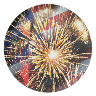 USA Flag and Fireworks Party Plates