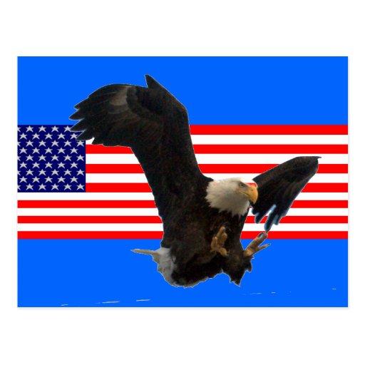 USA FLAG EAGLE POST CARD