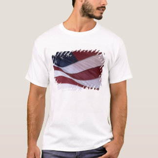 USA flag, North Carolina, USA T-Shirt