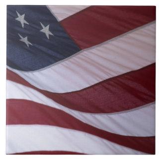 USA flag, North Carolina, USA Tile