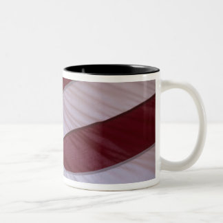 USA flag, North Carolina, USA Two-Tone Coffee Mug